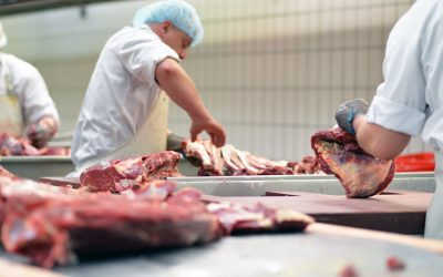 Nouvelle augmentation des salaires dans la boucherie artisanale en 2020